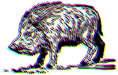 Big-Boar